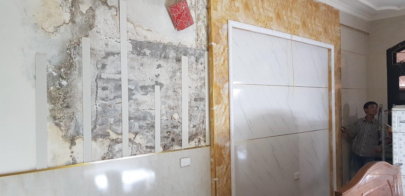 tường bị ẩm mốc trong thực tế